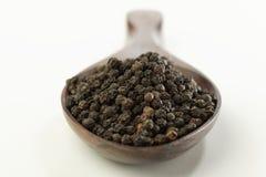 Indische kruid-zwarte peper royalty-vrije stock fotografie