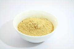 Indische kruiden 12 knoflookpoeder Stock Afbeelding