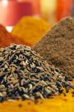 Indische kruiden Stock Foto's