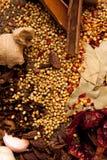 Indische kruiden. Stock Afbeelding