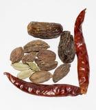 Indische kruiden met droge vruchten Royalty-vrije Stock Foto's