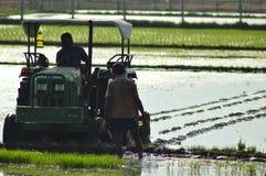 Indische ländliche Landwirternte, die auf dem Gebiet mit Traktor bewirtschaftet Lizenzfreies Stockbild