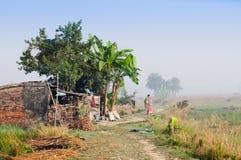 Indische landelijke vrouw die in de mist lopen Royalty-vrije Stock Afbeeldingen