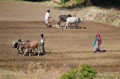 Indische Landwirtfamilie auf dem Gebiet Stockfotos