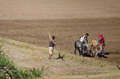 Indische Landwirtfamilie auf dem Gebiet Lizenzfreie Stockfotos