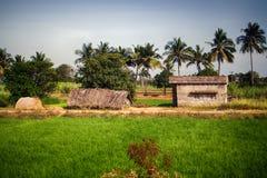 Indische landwirtschaftliche Nutzflächen mit Häusern von ryots Lizenzfreies Stockfoto