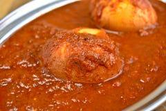 Indische maaltijd met eikerrie stock fotografie