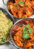 Indische Mahlzeit Stockfotografie