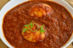 Indische Mahlzeit mit Eicurry stockbilder