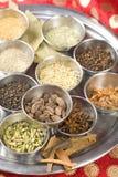 Indische masala Gewürze Stockbilder