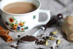 Indische masalachai, thee die van hete ayurvedic kruiden wordt gemaakt Stock Afbeeldingen