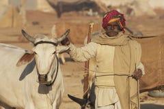 Indische Mens en zijn Os van de Prijs Royalty-vrije Stock Afbeeldingen