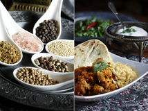 Indische Montering Royalty-vrije Stock Foto's