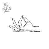Indische mudra spirituality India yoga Vectorhand getrokken affiche, malplaatje, druk royalty-vrije illustratie