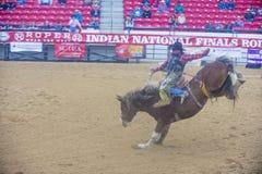 Indische nationale def.rodeo Stock Afbeeldingen