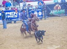 Indische nationale def.rodeo Stock Fotografie