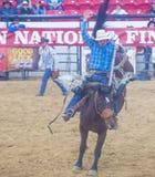 Indische nationale def.rodeo Stock Afbeelding