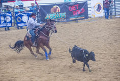 Indische nationale def.rodeo Royalty-vrije Stock Foto