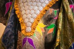 Indische olifant in een feestelijke kleuring stock fotografie