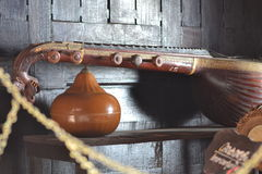 Indische Oude Veena Stock Fotografie