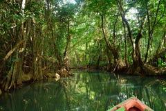 Indische rivier Royalty-vrije Stock Foto's