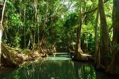 Indische rivier Royalty-vrije Stock Afbeelding