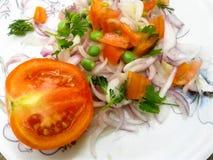 Indische salade met sappige tomaten stock afbeeldingen