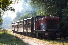 Indische Spoorwegen Royalty-vrije Stock Foto's