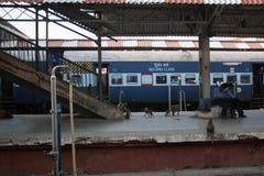 Indische Station stockfotos