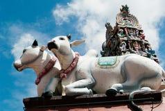 Indische tempel in Singapore stock afbeeldingen