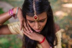 Indische Tikka Stock Afbeeldingen