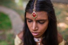 Indische Tikka Royalty-vrije Stock Foto