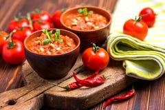 Indische Tomate Rasam mit Linse, Minze, Koriander und Acajoubaum Lizenzfreie Stockfotos