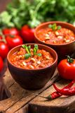 Indische Tomate Rasam mit Linse, Minze, Koriander und Acajoubaum Lizenzfreies Stockfoto