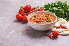 Indische Tomate Rasam mit Linse, Minze, Koriander und Acajoubaum Stockfotos