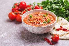 Indische Tomate Rasam mit Linse, Minze, Koriander und Acajoubaum Stockbilder