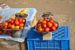 Indische tomaten Royalty-vrije Stock Foto's