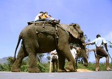 Indische touristische Familie, die eine Elefantfahrt nimmt Stockfotos