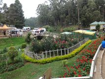 Indische tuin dichte mening die ontzagwekkend kijken Stock Foto