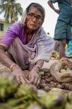 Indische vrouwelijke verkoper stock fotografie