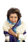 Indische Wijze Schoonheid - Royalty-vrije Stock Afbeeldingen