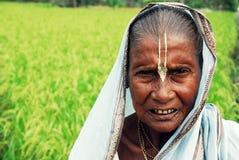 Indische Witwe Stockfotografie