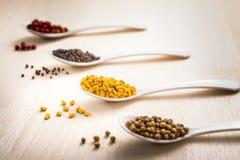 Indische zaden Schinduf stock foto's