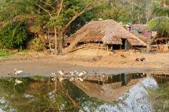 Indischer Bauernhof Lizenzfreies Stockbild