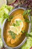 Indischer Fisch-Curry Stockbild