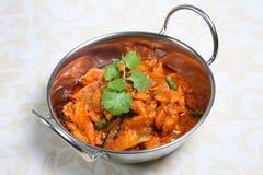 Indischer Huhn-Curry-Teller Stockbild