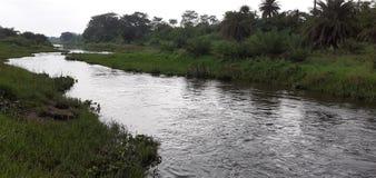 Indischer kleiner Fluss und Wald lizenzfreie stockfotografie