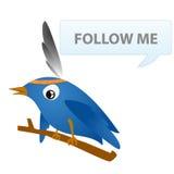 Indischer Leiter des Twitter Lizenzfreie Stockbilder