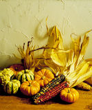 Indischer Mais u. Kürbisse stockfotos