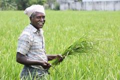Indischer Mann, der Sichel und Ernten hält lizenzfreie stockbilder
